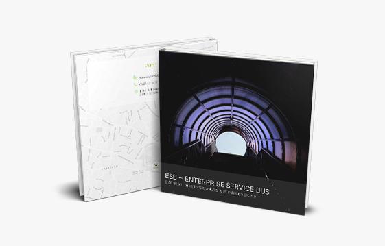 Le guide axysweb pour tout savoir sur les architectures ESB