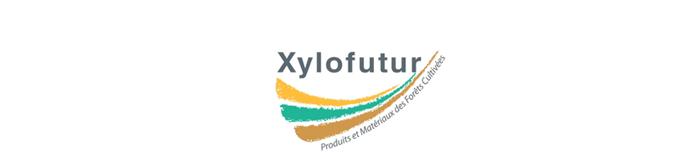 Logo du Pôle de Compétitivité de la Filière Bois en Nouvelle-Aquitaine