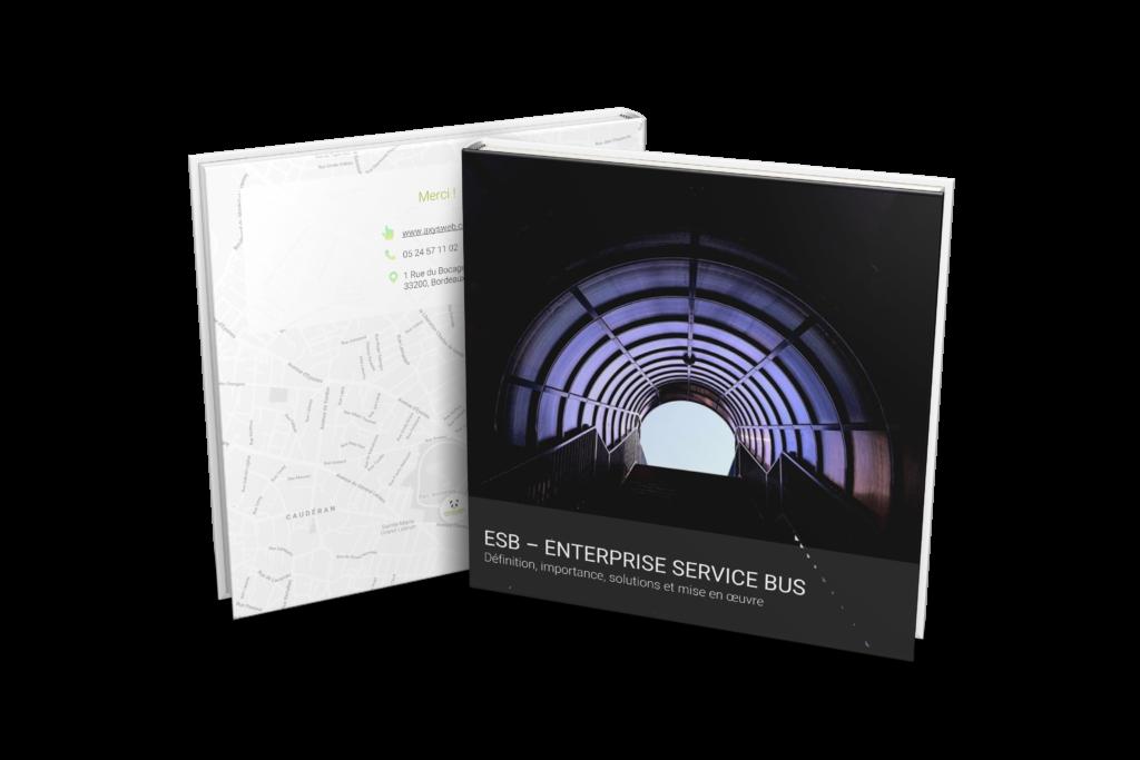 Découvrez le guide pour tout savoir sur les architectures ESB